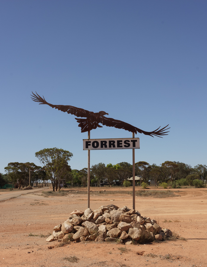 The Wedge Tailed Eagle at Forrest